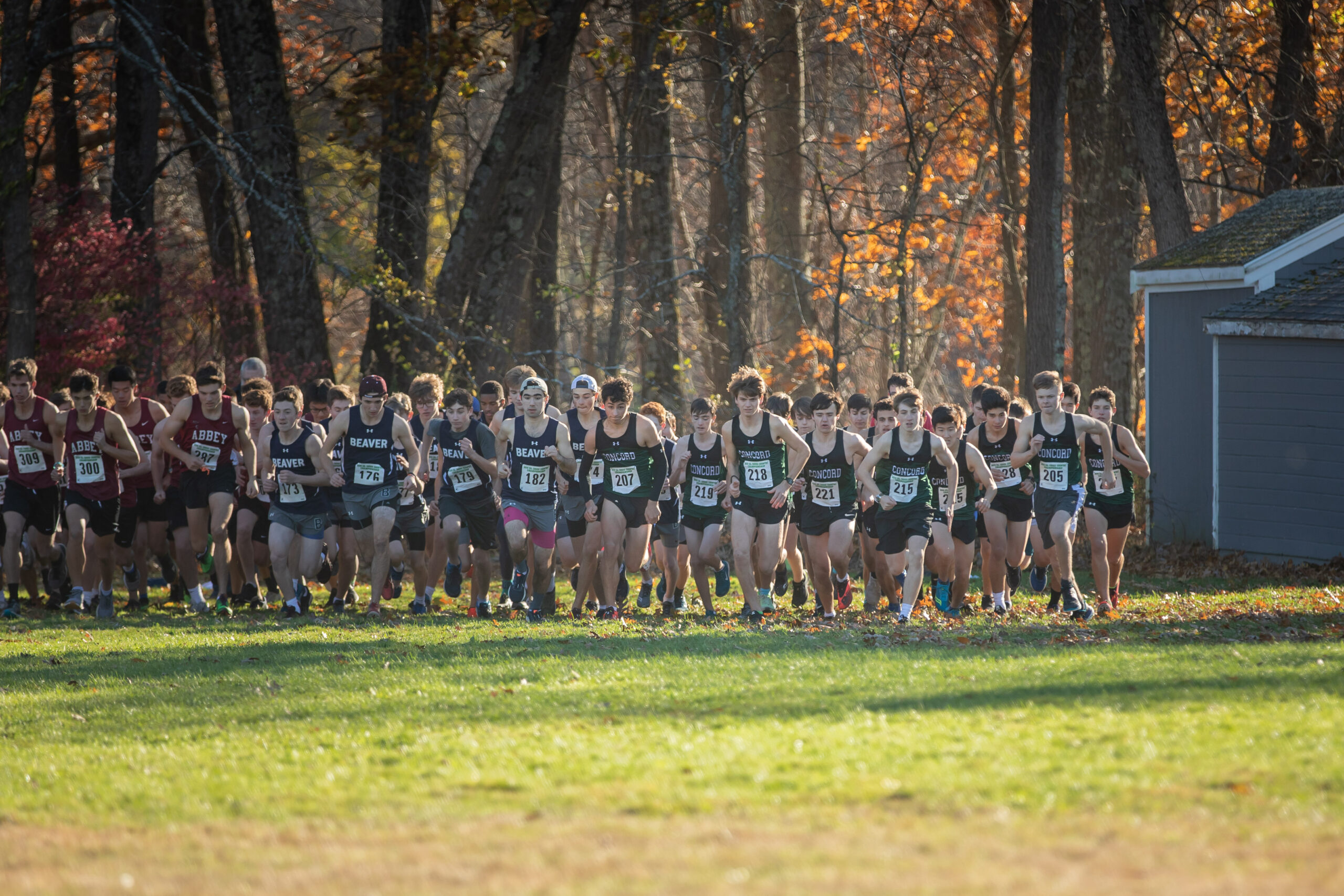 """The CA Cross Country Team's """"Journey Across the Journey"""""""